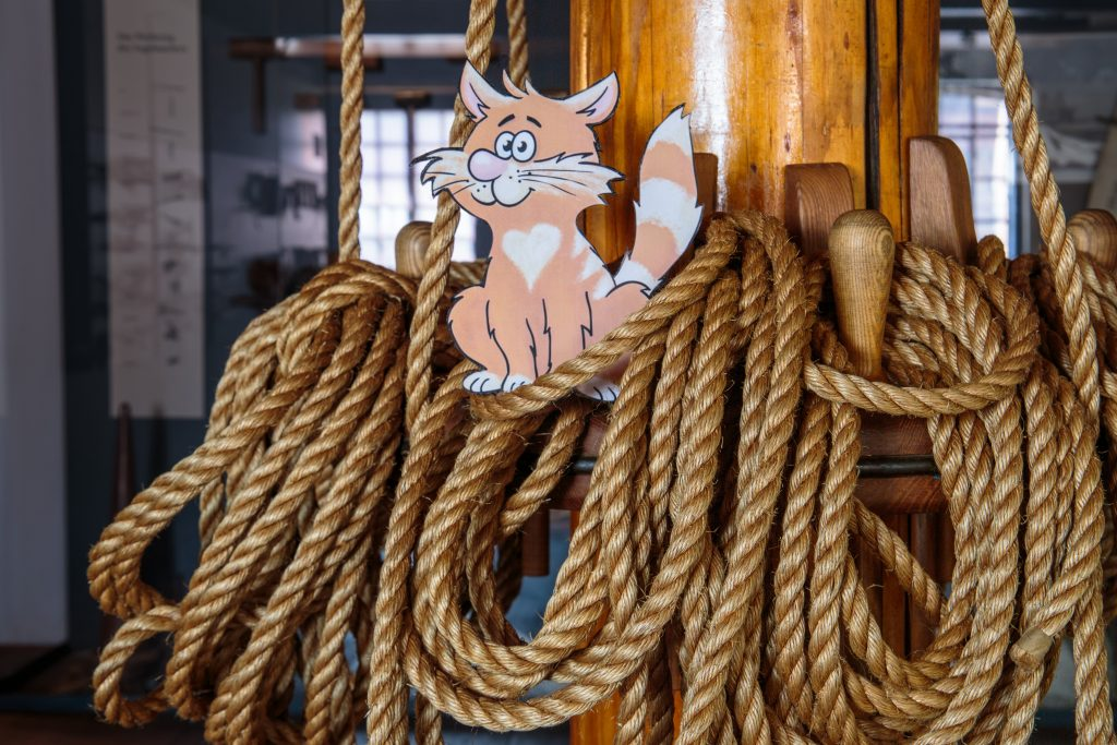 Rubens isn't a normal cat – he is a ship's cat! Join him on his adventures and help him to solve all the secrets and riddles.