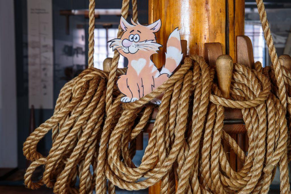 Bordkatze, Kater Rubens sitzt auf Tauwerk im Internationalen Maritimen Museum Hamburg und Warte auf den Quiz.